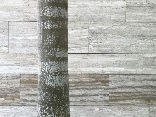 House-in-Port-of-Spain-travertine-palm-jamie-fobert-architects